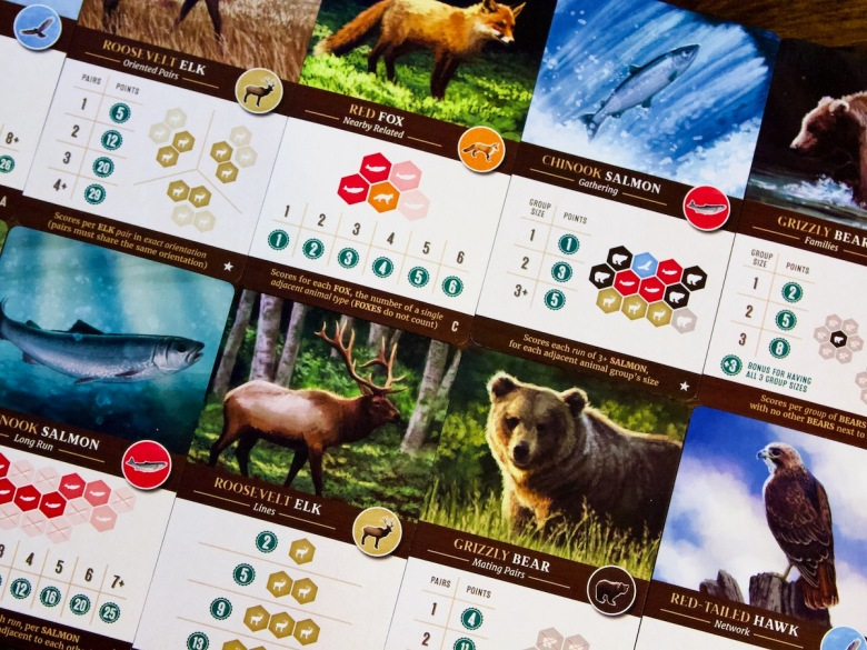 There are a variety of scoring options in Cascadia Board Game by AEG and Flatout